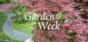 Garden of the Week
